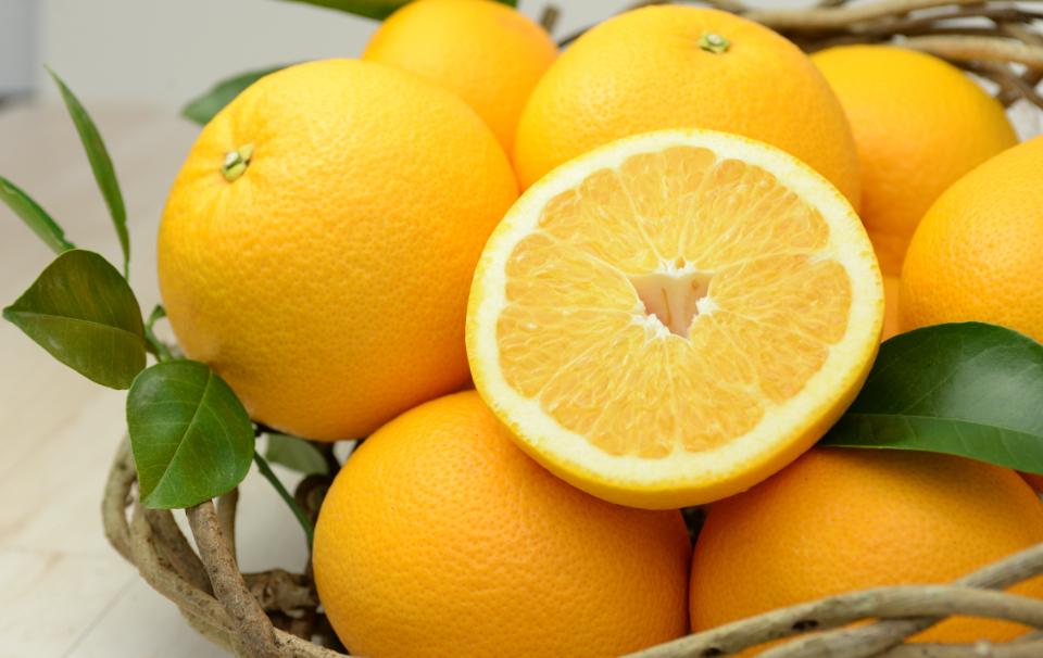 柑橘類に含まれるオーラプテンが熱ストレスから細胞を守るのに有効